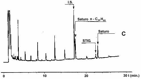 Gascromatogrammi ottenuti da campioni di olio d'oliva analizzati su colonna capillare di silice fusa (0,25 mm di diametro interno, della lunghezza di 25 m) ricoperti di fenilmetilsilicone al 5 %, con uno spessore 0,25 mm.