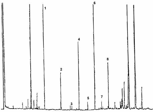 Cromatogramma della frazione alcolica di un olio d'oliva vergine